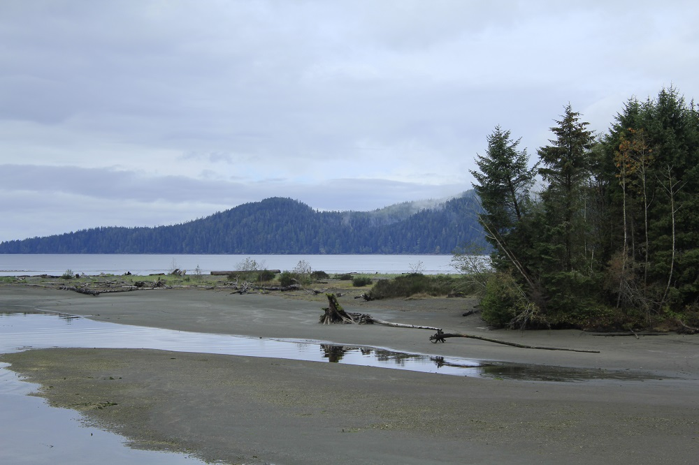 San Juan River Estuary, Vancouver Island, BC