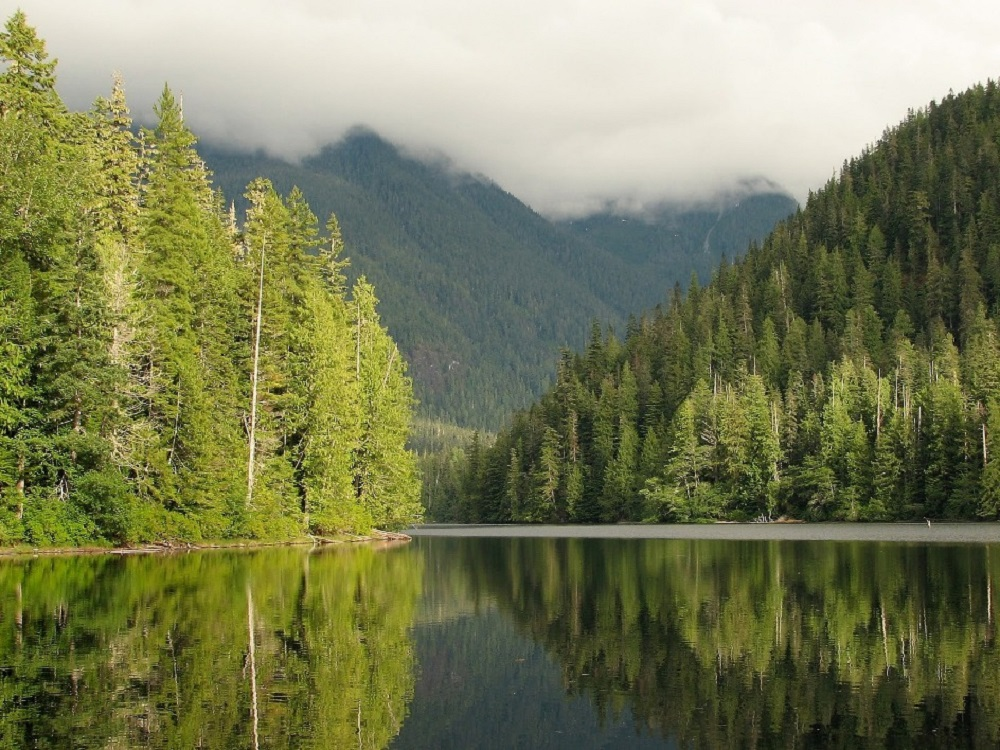 Schoen Lake, Vancouver Island, Pacific Northwest