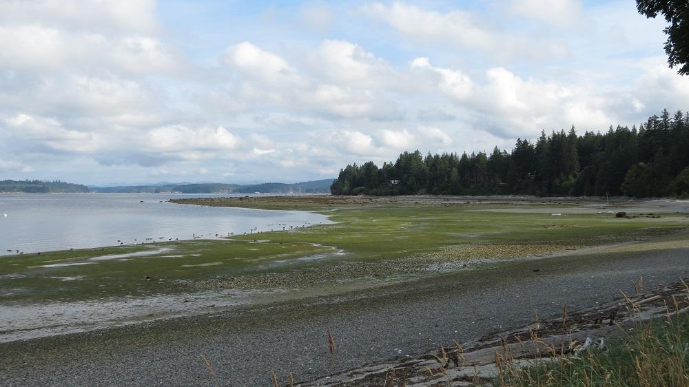 Smelt Bay, Cortes Island, Pacific Northwest