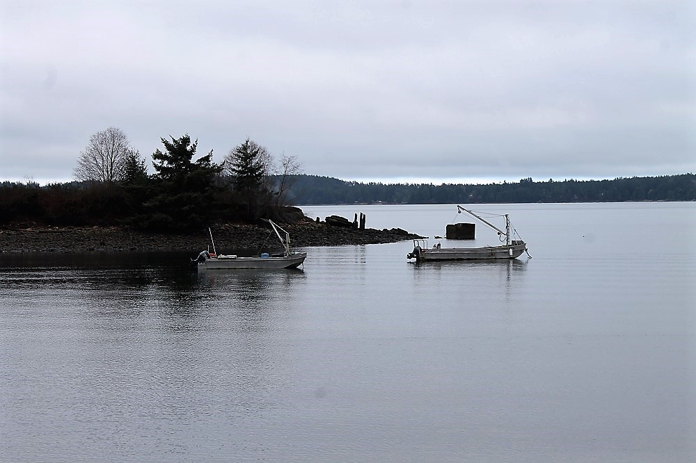 Union Bay, Vancouver Island, BC