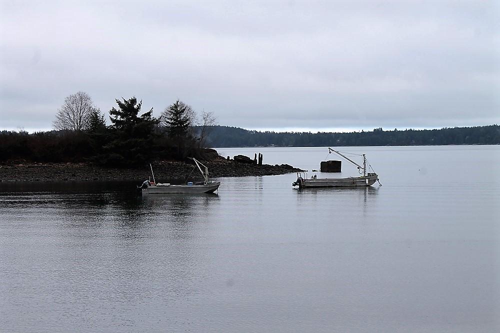 Union Bay, Vancouver Island, Pacific Northwest