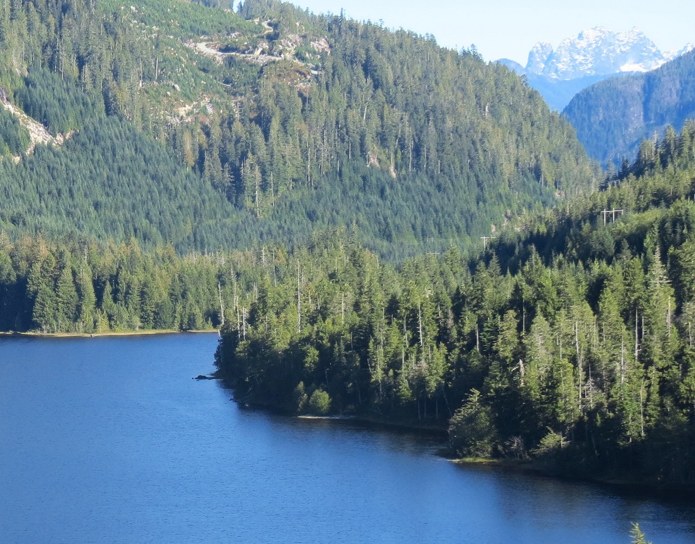 Upana Lake, Vancouver Island, Pacific Northwest
