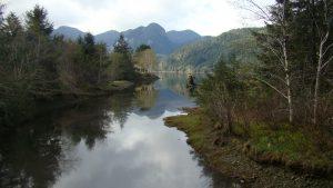 Zeballos River Estuary