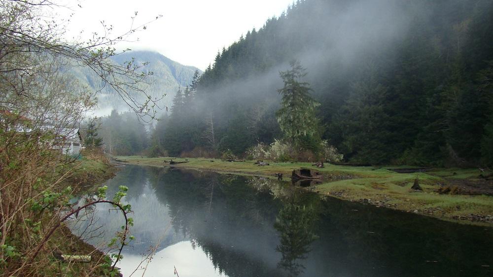 Zeballos River Estuary, Vancouver Island, BC