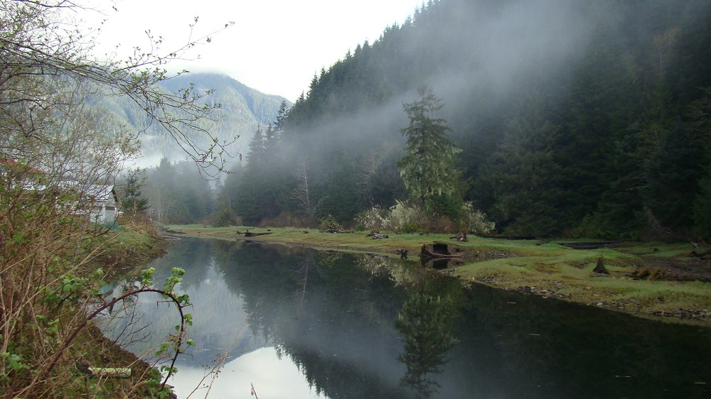 Zeballos River Estuary, Pacific Northwest