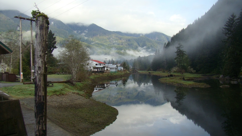Zeballos River Estuary, Estuaries, Pacific Northwest
