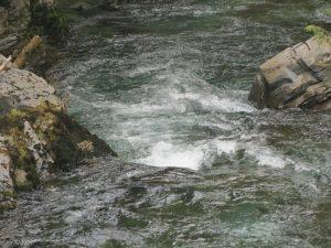 Ash River