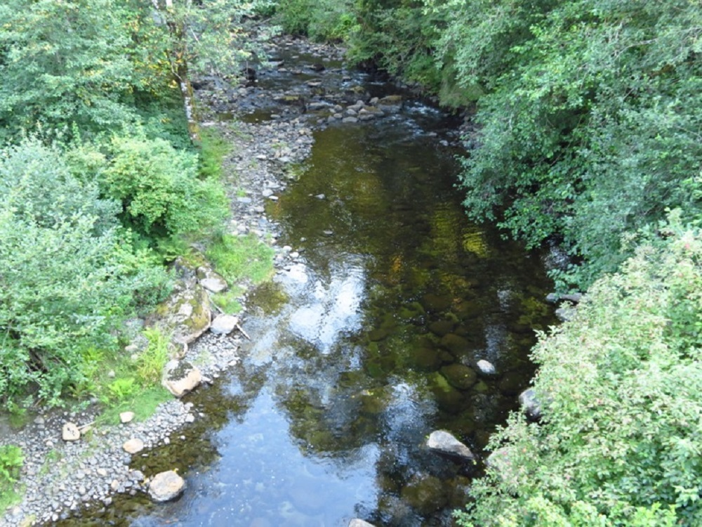 Artlish River