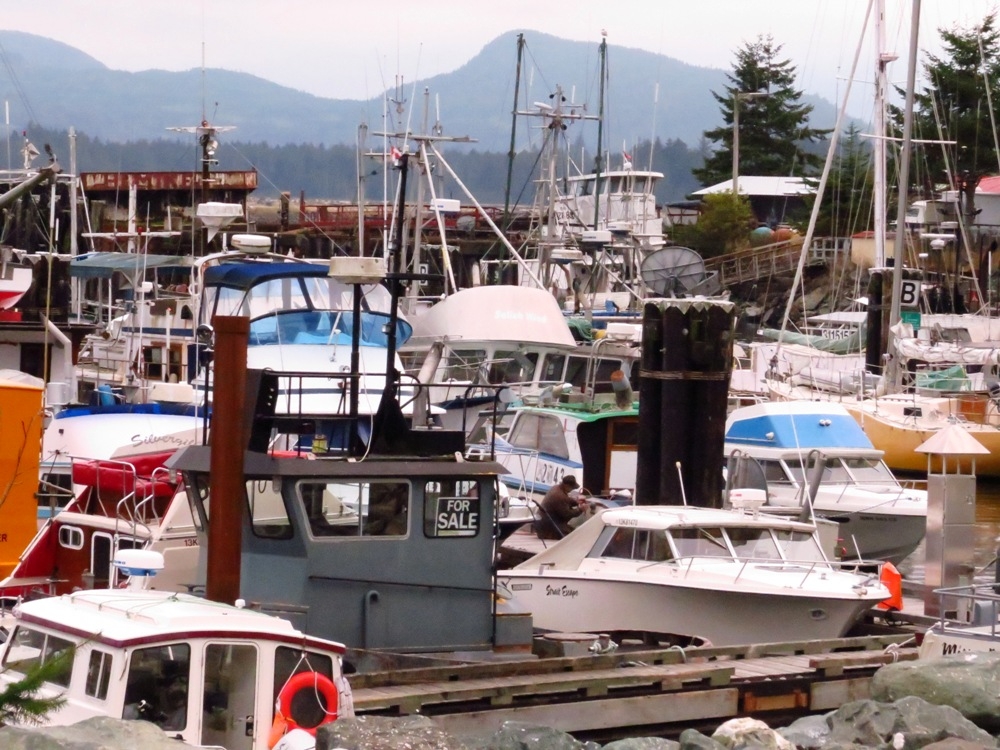 Kelsey Bay Harbor, Vancouver Island, BC