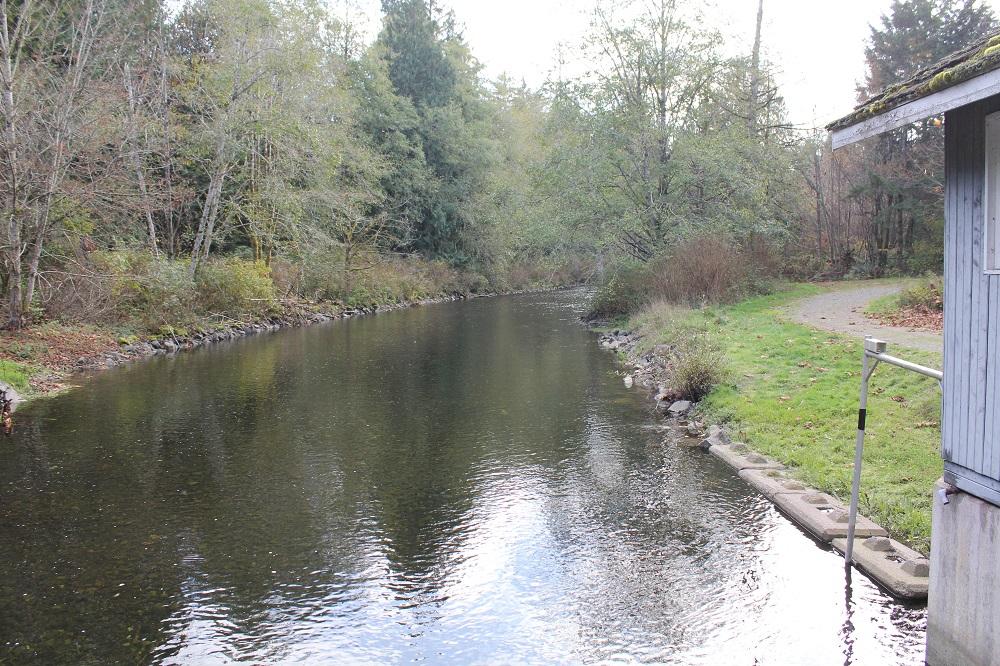 Qualicum River