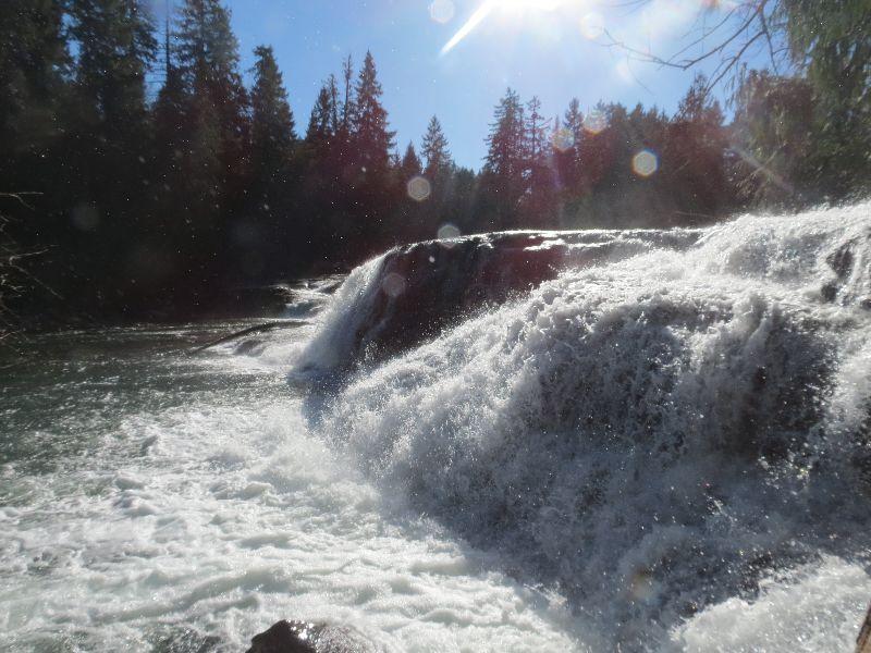 Puntledge Falls, Waterfalls