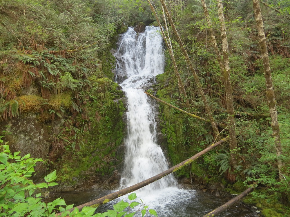 Alice Falls, Vancouver Island, Pacific Northwest