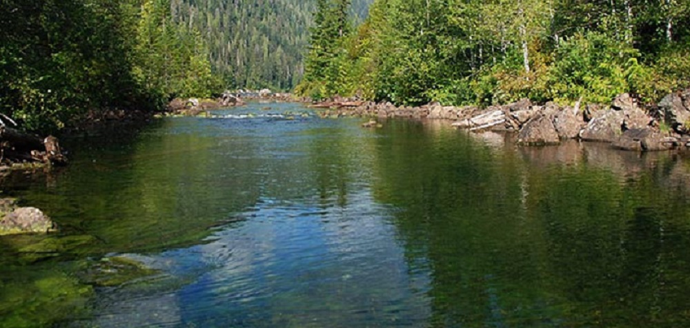Ash River, Vancouver Island, Pacific Northwest