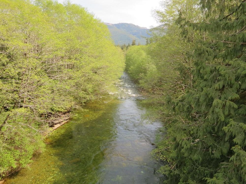 Benson River