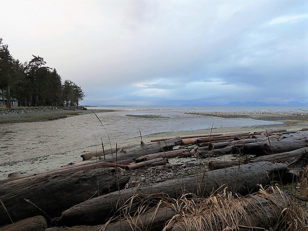 Black Creek, Vancouver Island, Pacific Northwest