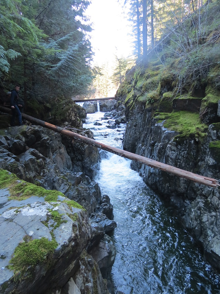 Brown River, Vancouver Island, Pacific Northwest