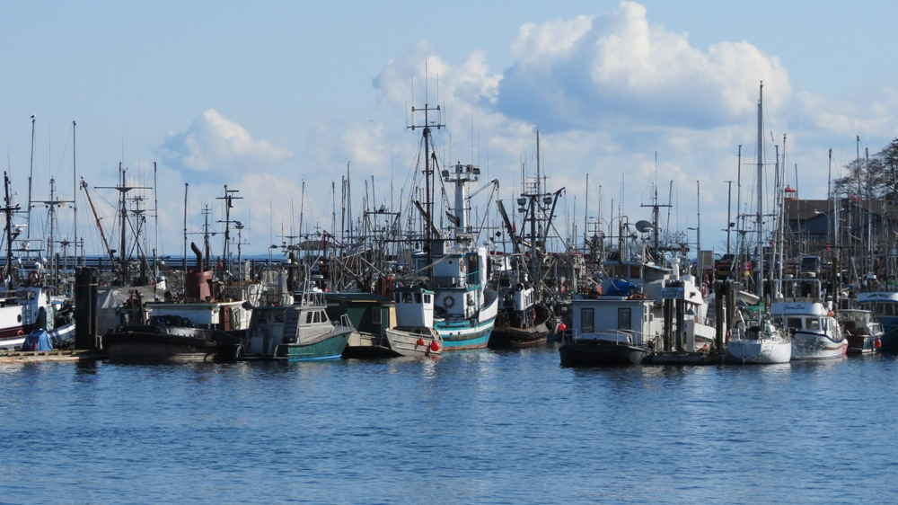 Campbell River Harbor