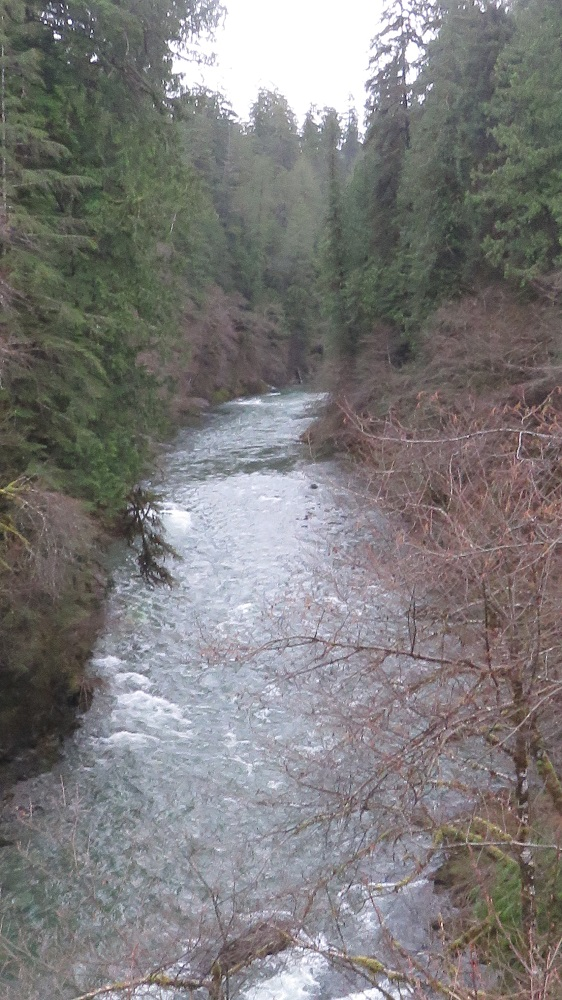 Caycuse River, Vancouver Island, BC