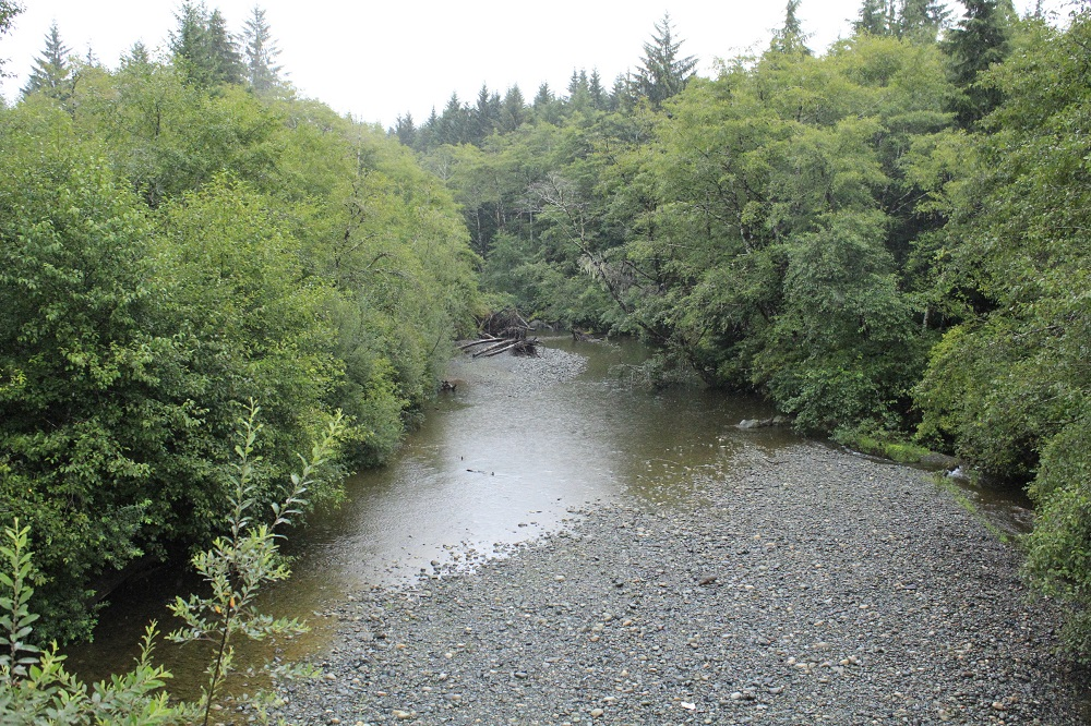 Cluxwe River, Vancouver Island, Pacific Northwest