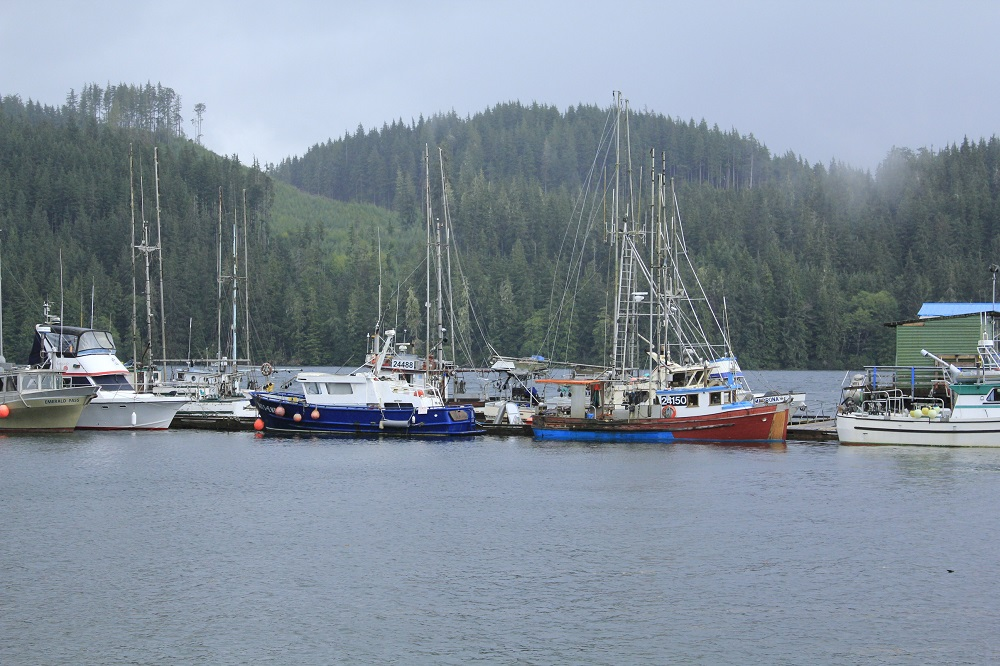Coal Harbor, Vancouver Island, Pacific Northwest