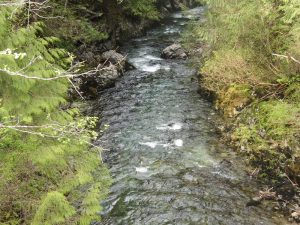 Davie River
