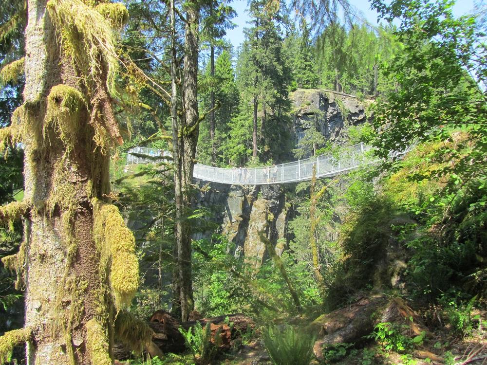 Elk Falls, Vancouver Island, Pacific Northwest