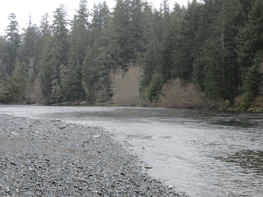 Eve River, Vancouver Island, Pacific Northwest