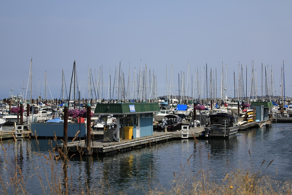 Fanny Bay Harbor