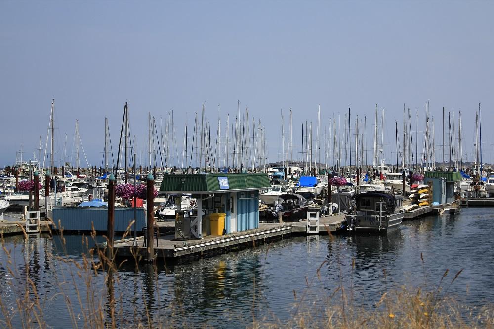 Fanny Bay Harbor