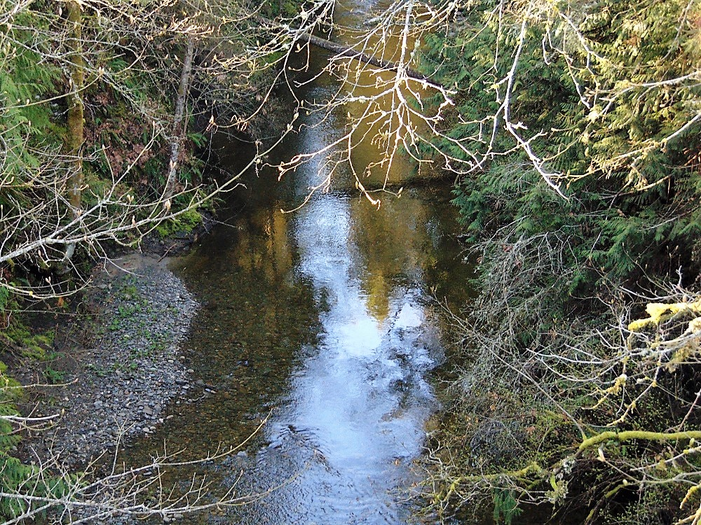 French Creek, Vancouver Island, Pacific Northwest
