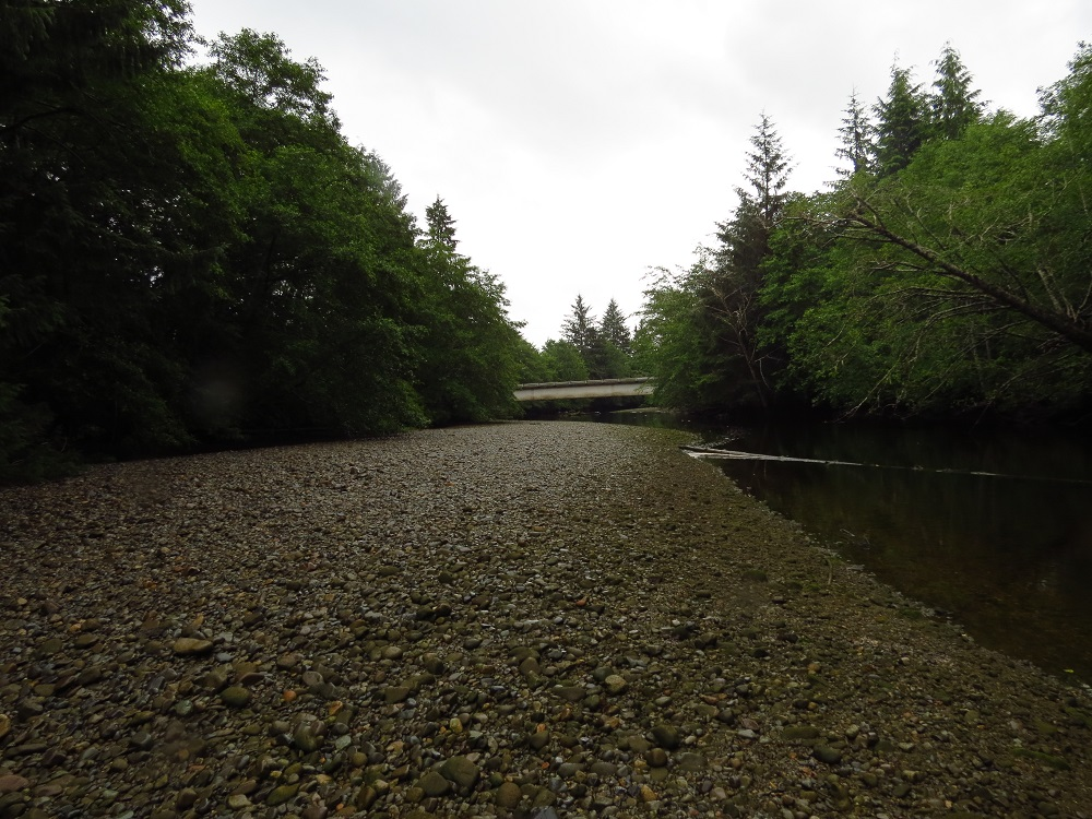 Goodspeed River, Vancouver Island, Pacific Northwest