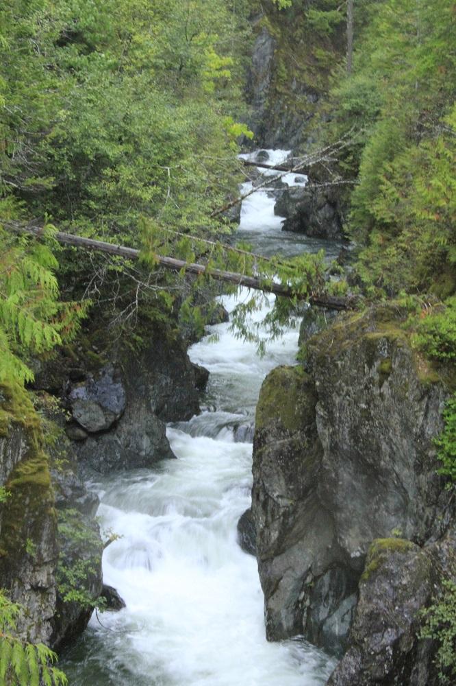 Harris Creek, Vancouver Island, Pacific Northwest