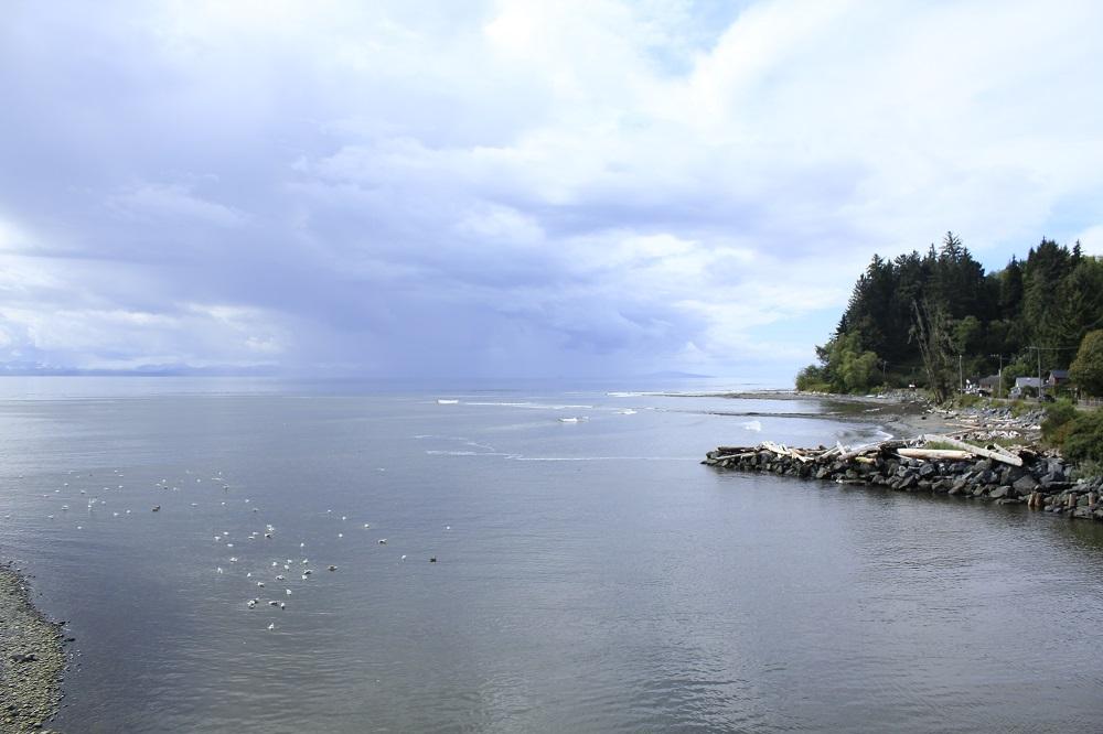Jordon River, Vancouver Island, Pacific Northwest