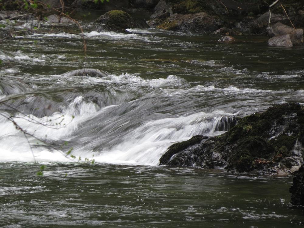 Koksilah River