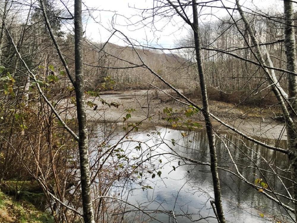 Mahatta River