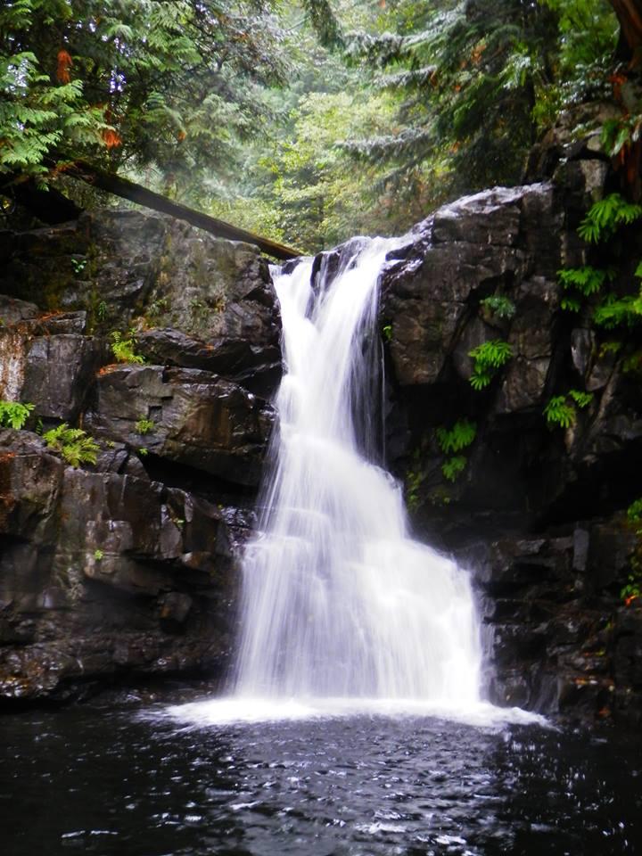 Mohun Creek, Vancouver Island, Pacific Northwest