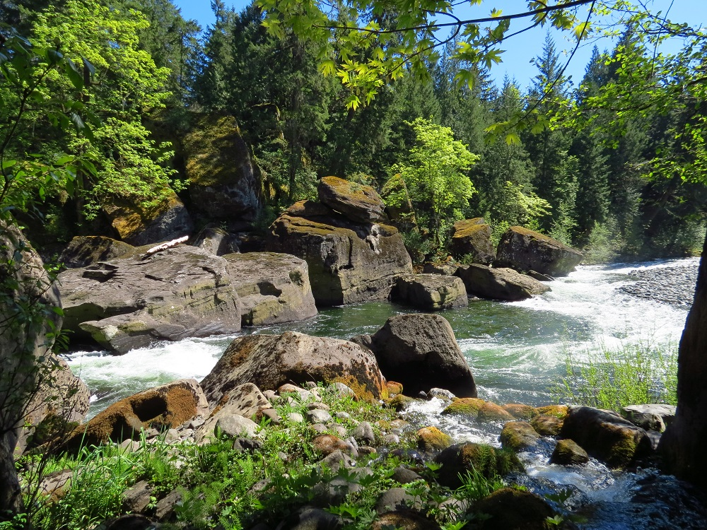 Nanaimo River, Vancouver Island, Pacific Northwest