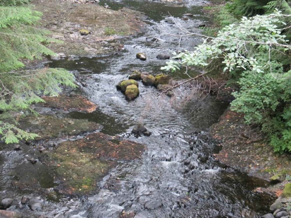 Nahwitti River