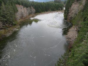 Nimpkish River