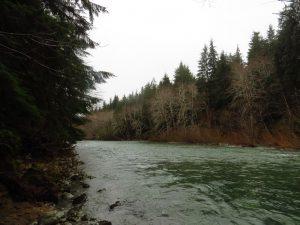 Nitinat River