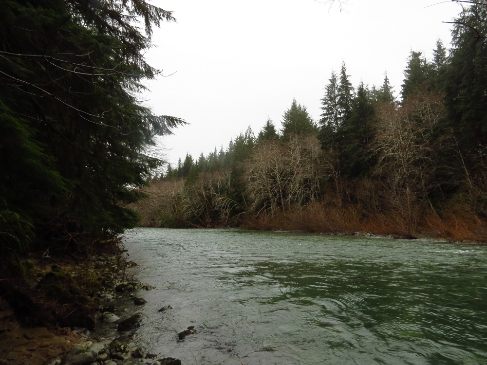 Nitinat River, Vancouver Island, Pacific Northwest