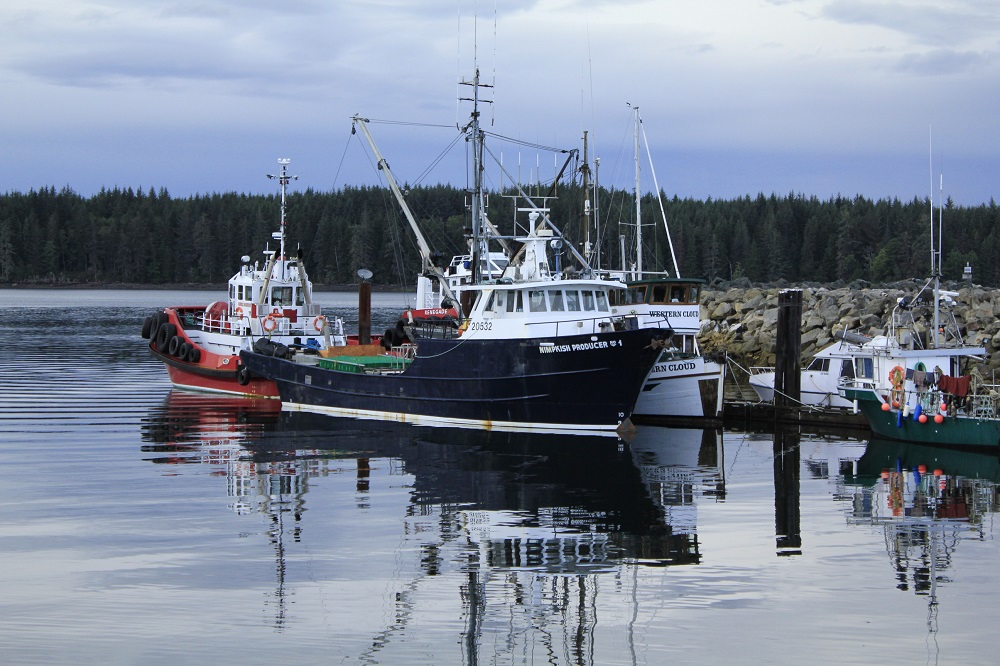 Port McNeill, Vancouver Island, Pacific Northwest