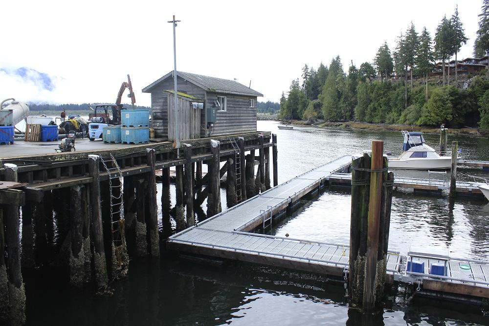 Port Renfrew