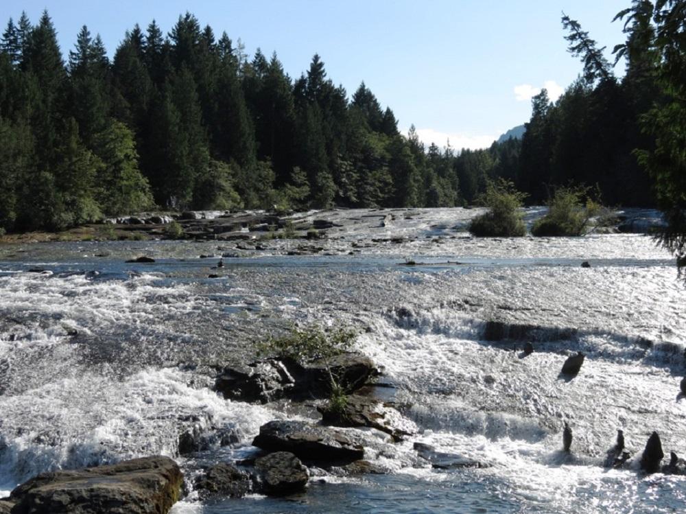 Puntledge River