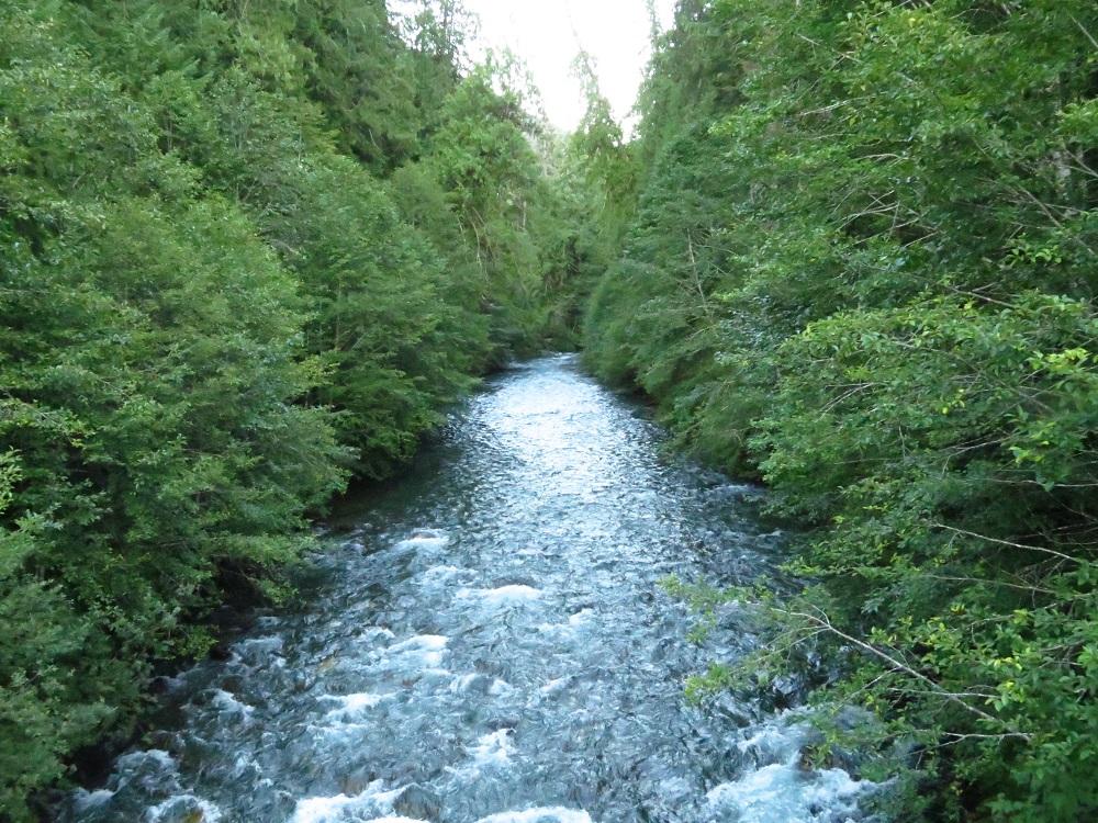 Ralph River