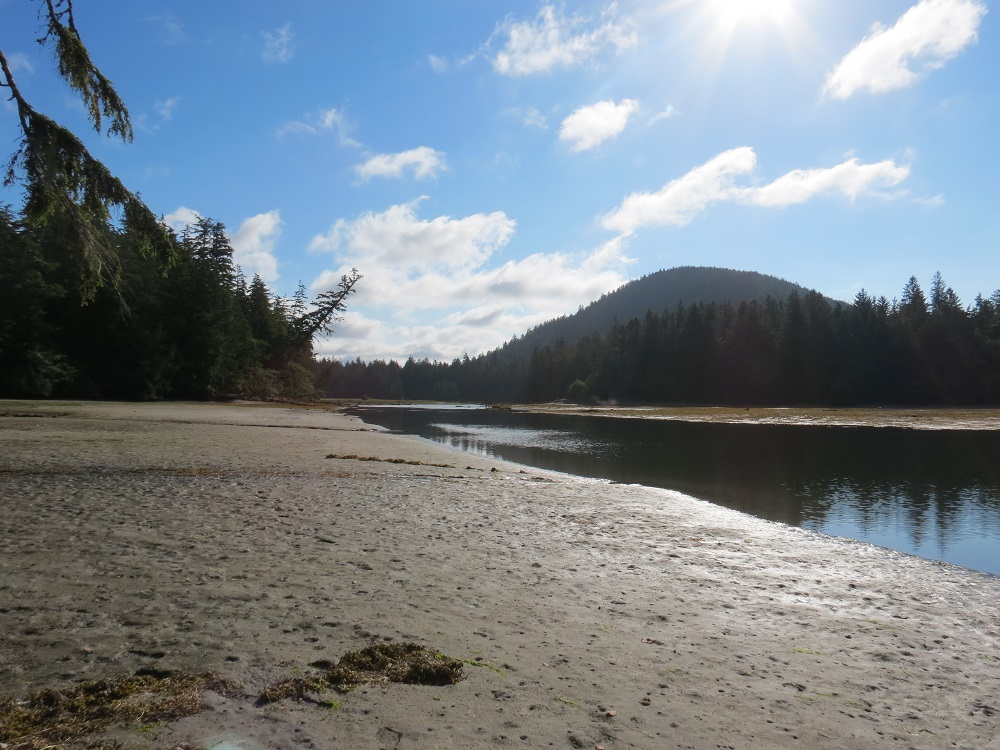 San Josef River, Vancouver Island, Pacific Northwest