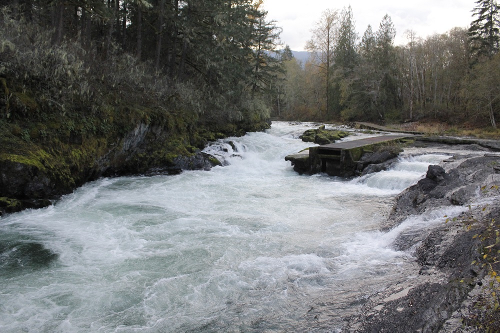 Cowichan River, Vancouver Island, Pacific Northwest