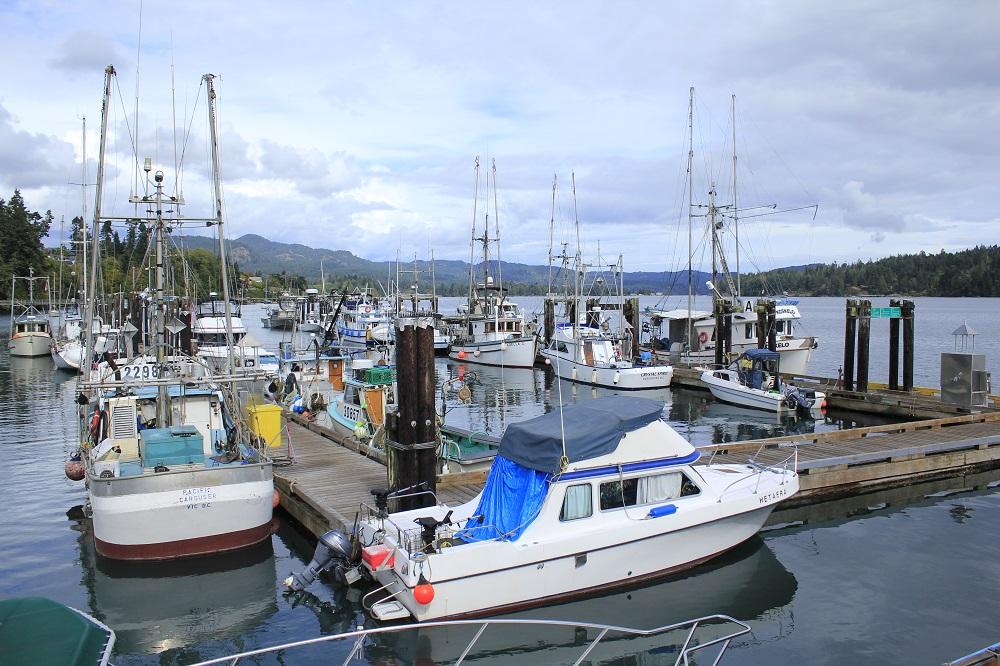 Sooke Harbor
