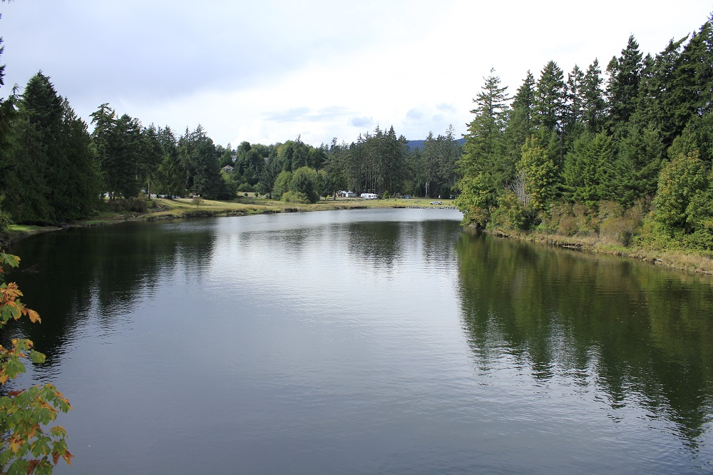 Sooke River, Vancouver Island, Pacific Northwest