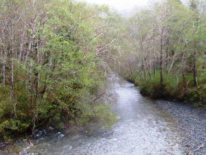Tahsis River